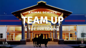Team Up To Support Our Animal Science Teams