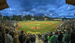 Baseball Facility Updates