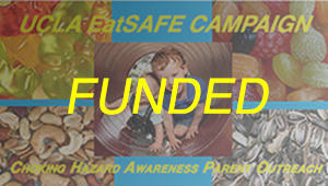 UCLA EatSAFE Campaign Project