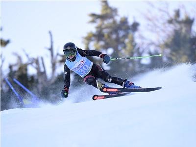 Skiing Tile Image