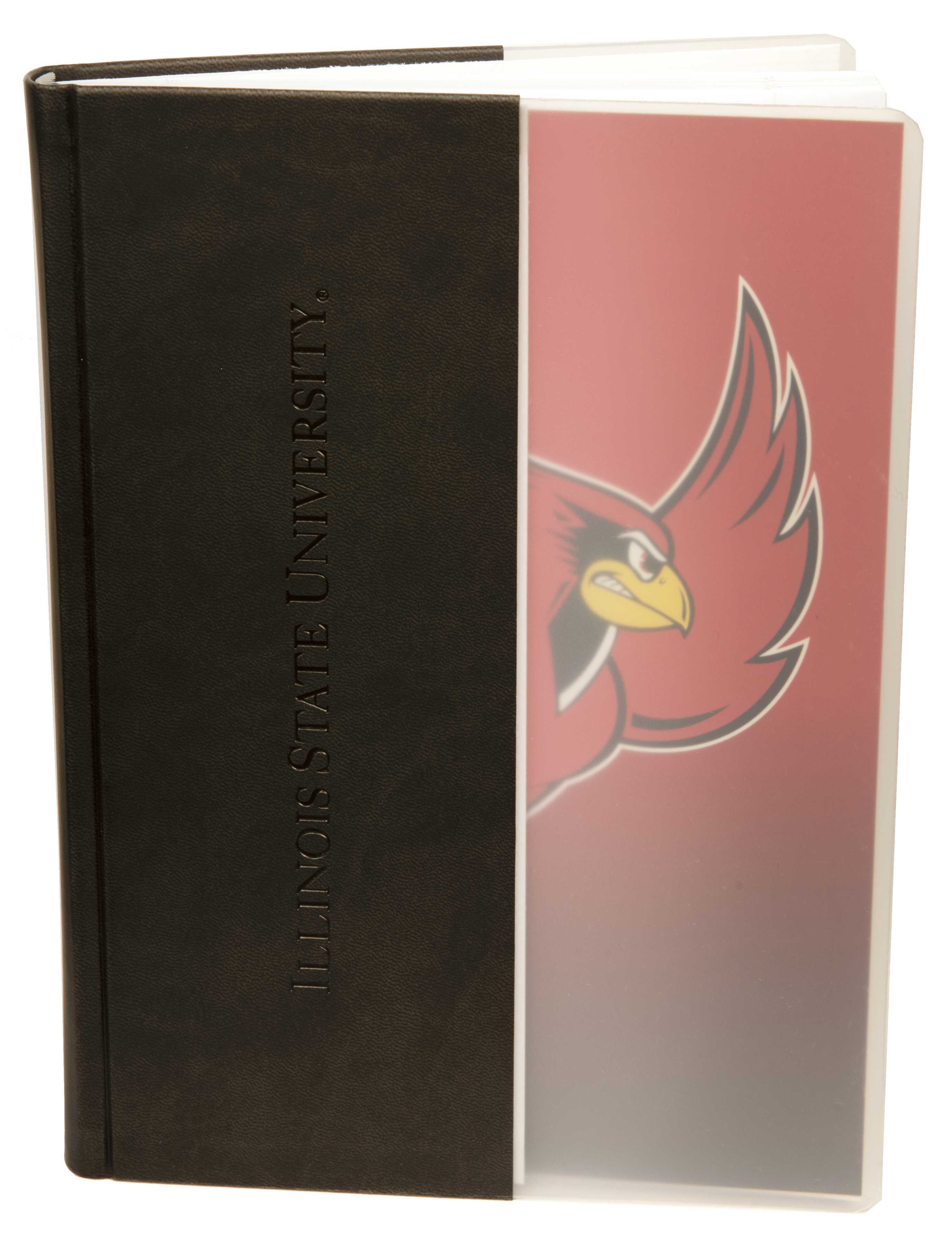 Photo of Redbird in Flight notebook