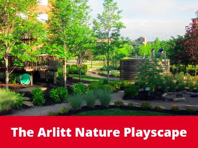 The Arlitt Nature Playscape Tile Image