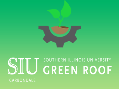 Green Roof Project Tile Image