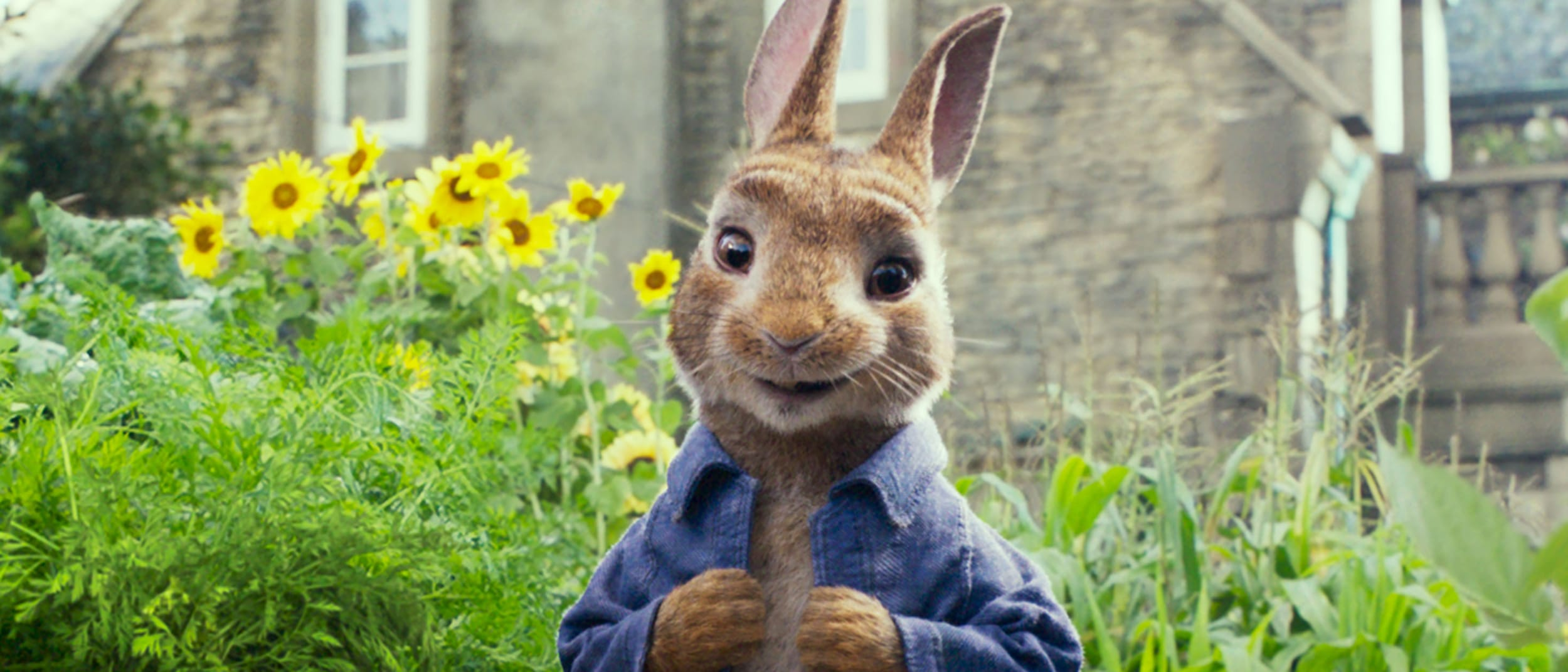 Find Peter Rabbit and friends