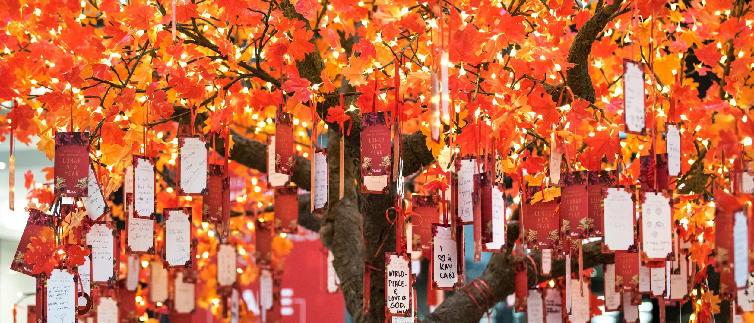 Lunar New Year wishing tree