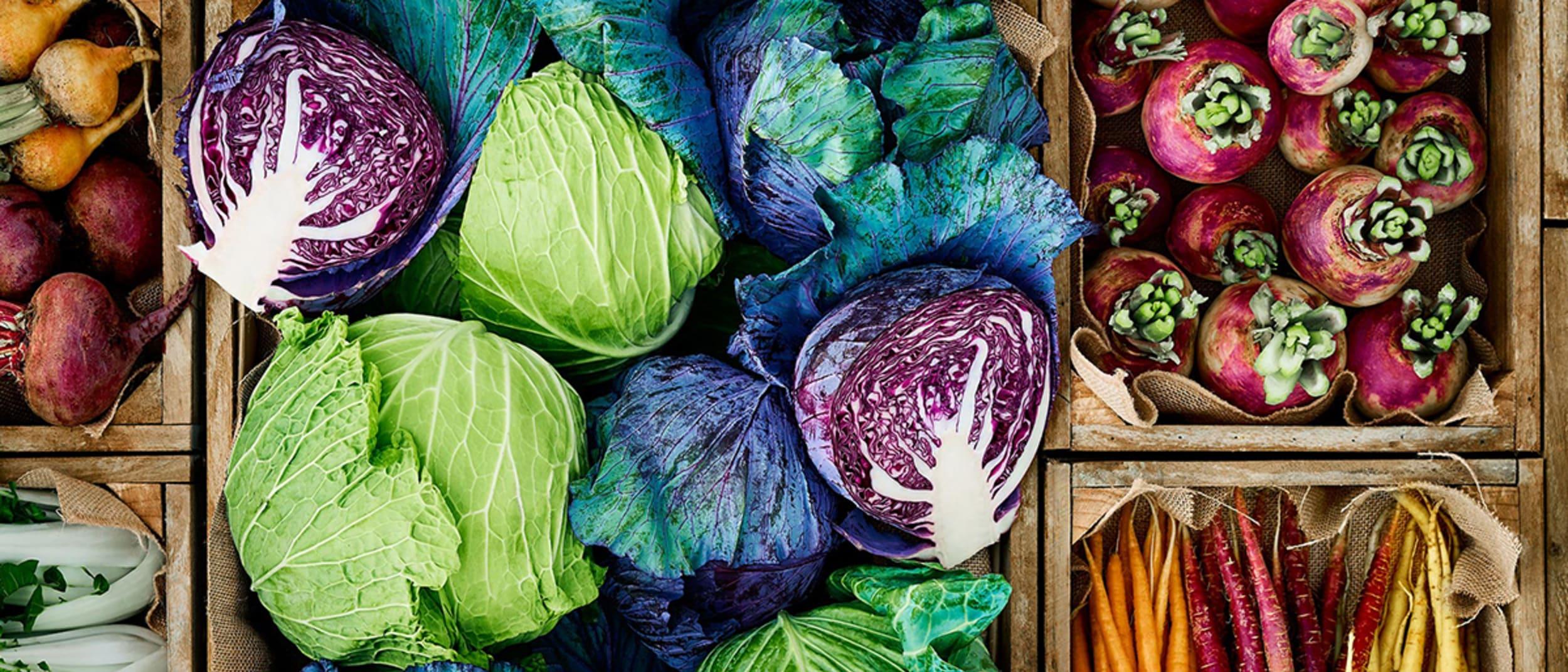 Fresh food market day