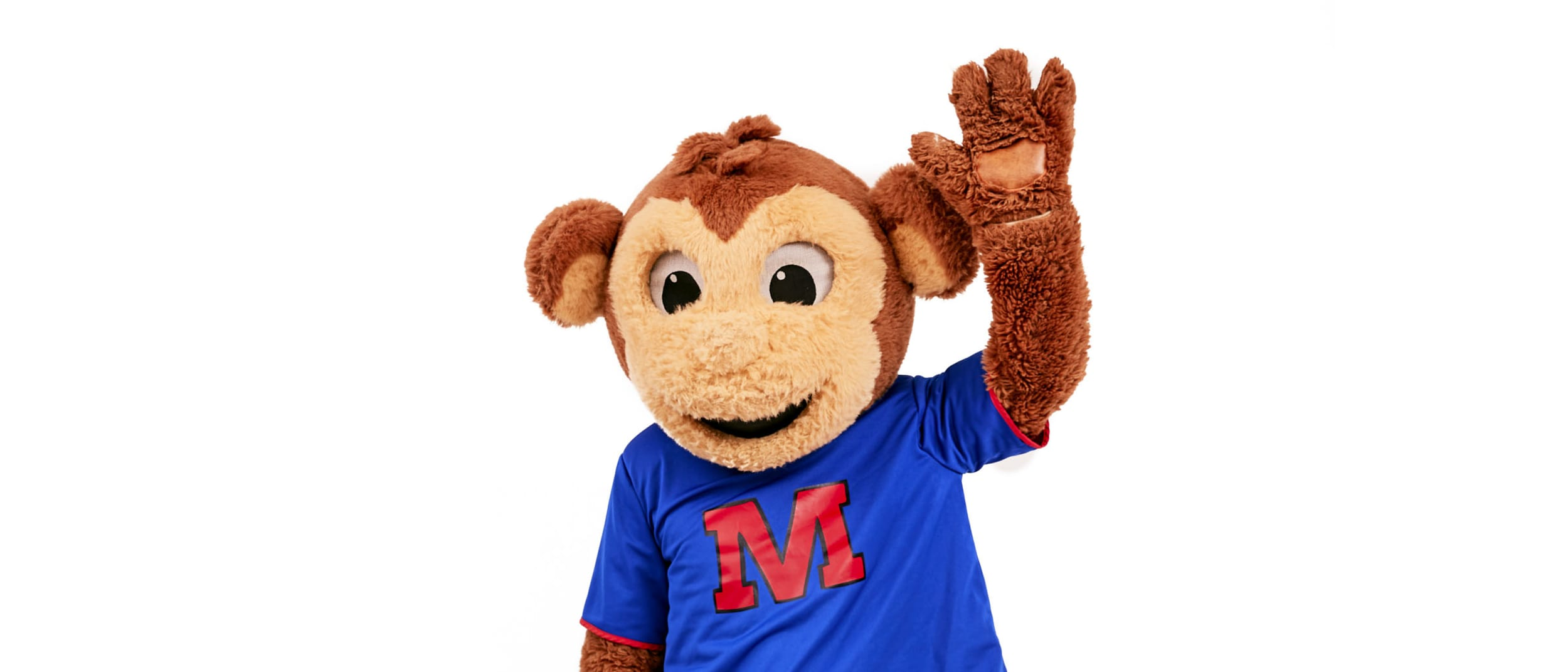 Monkey around with Monty this summer