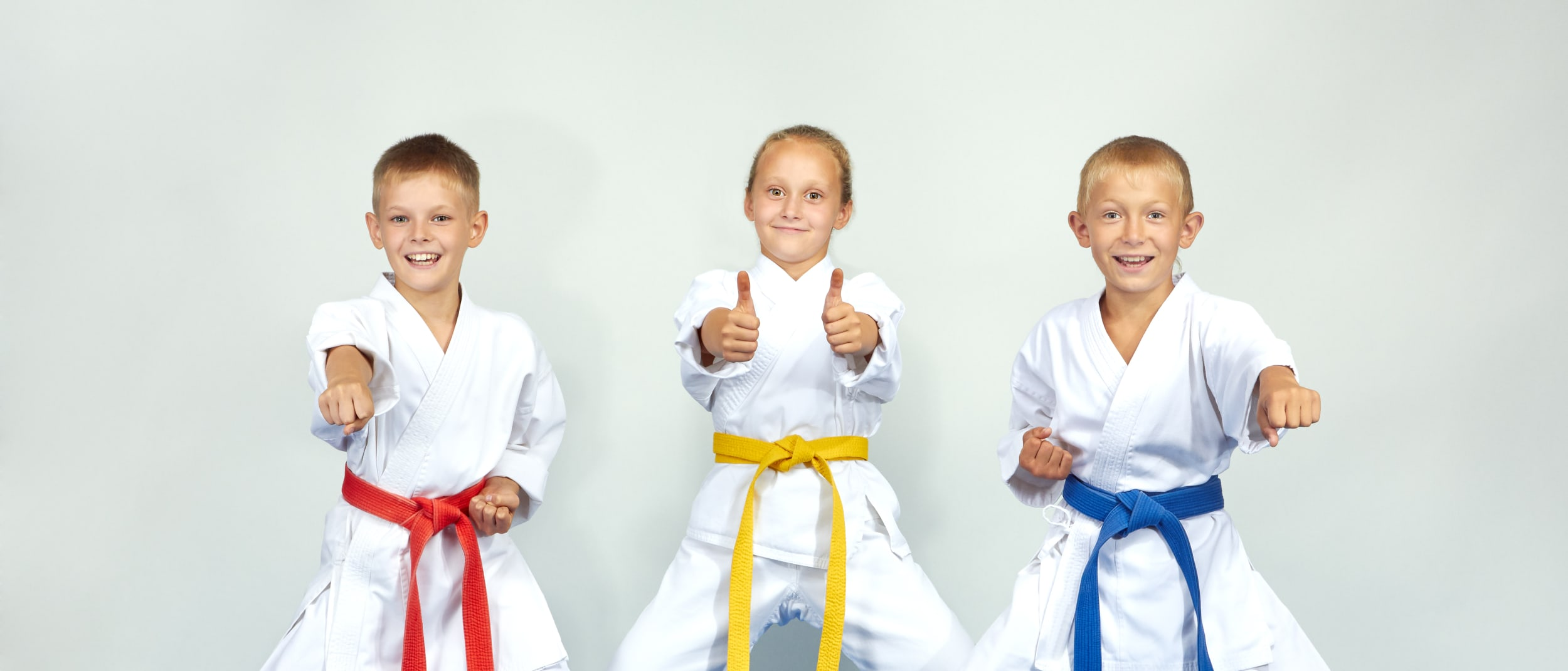 Free karate workshops: School Holiday Event