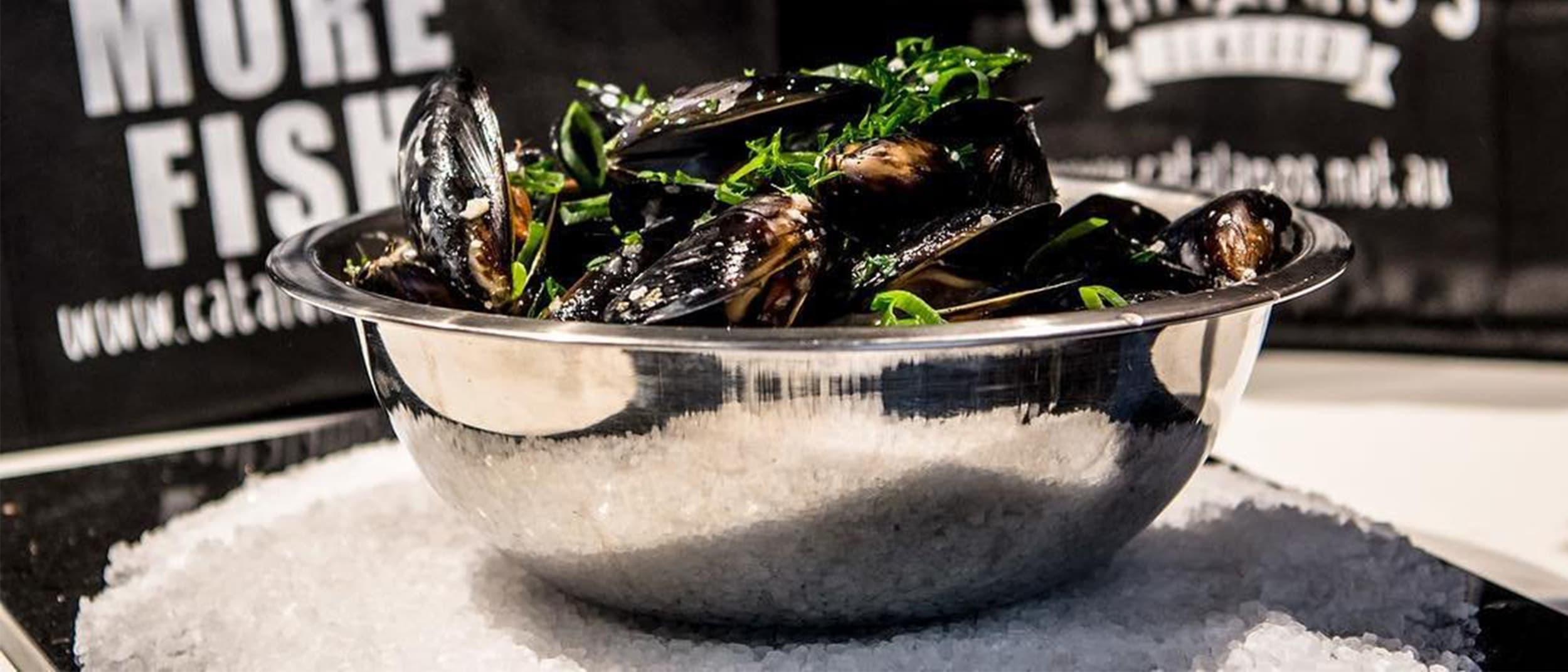 Catalano's Seafood: save $3 per kilo on fresh SA mussels