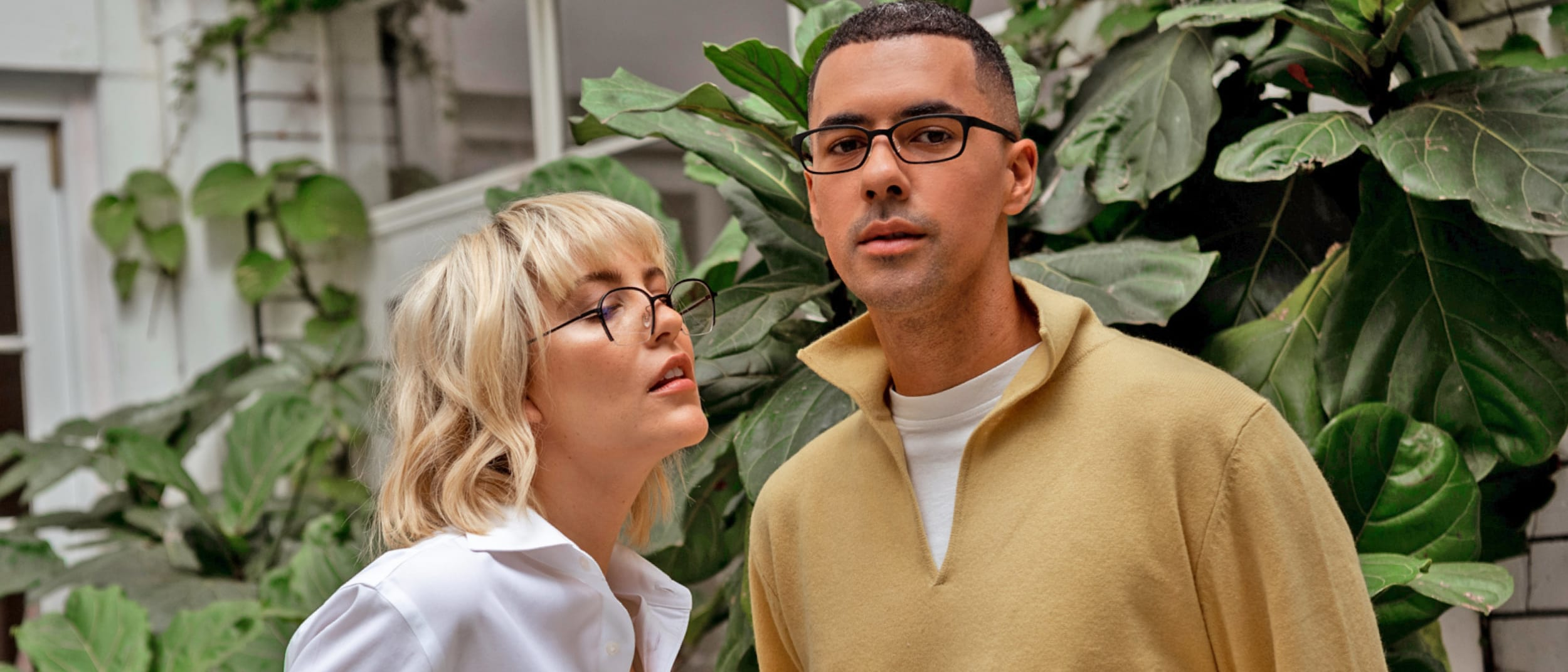 Torga Optical: Family frames deal