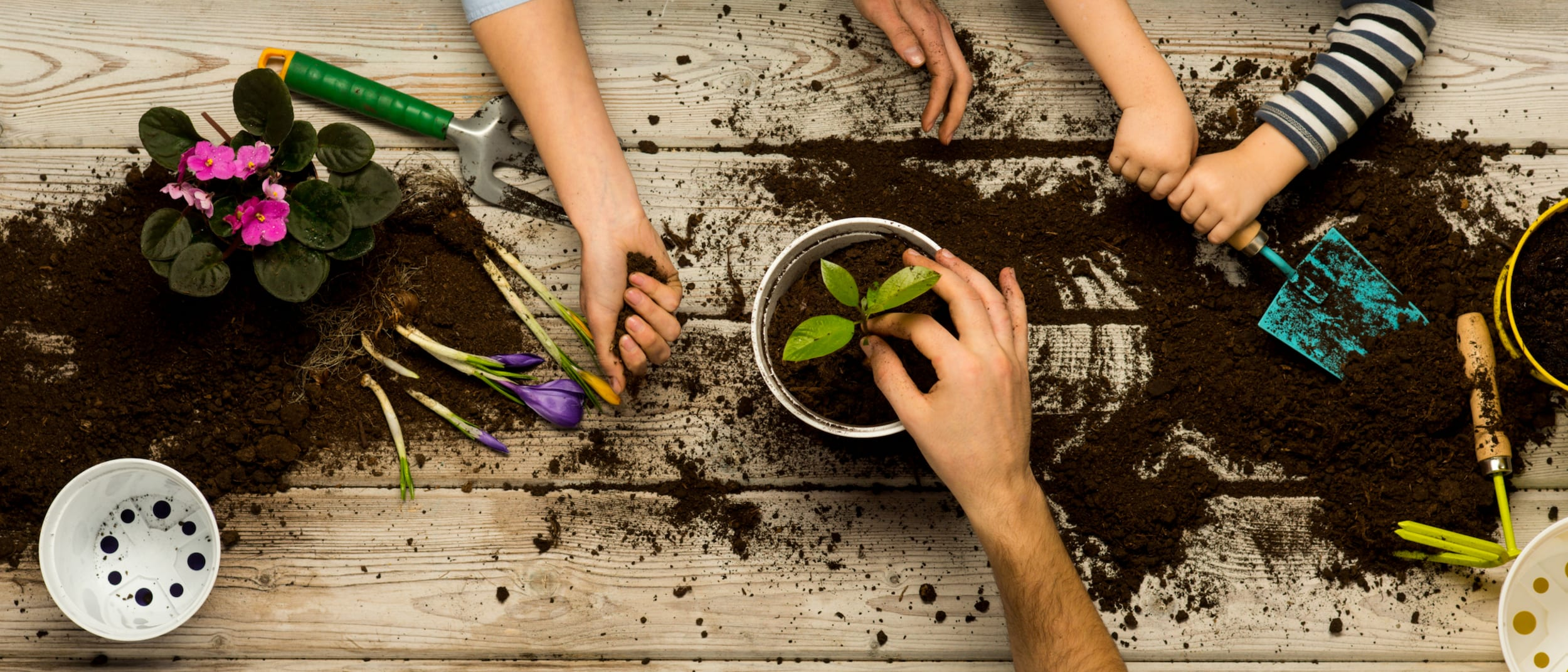 School holiday potting & planting workshops with Gro Urban Oasis