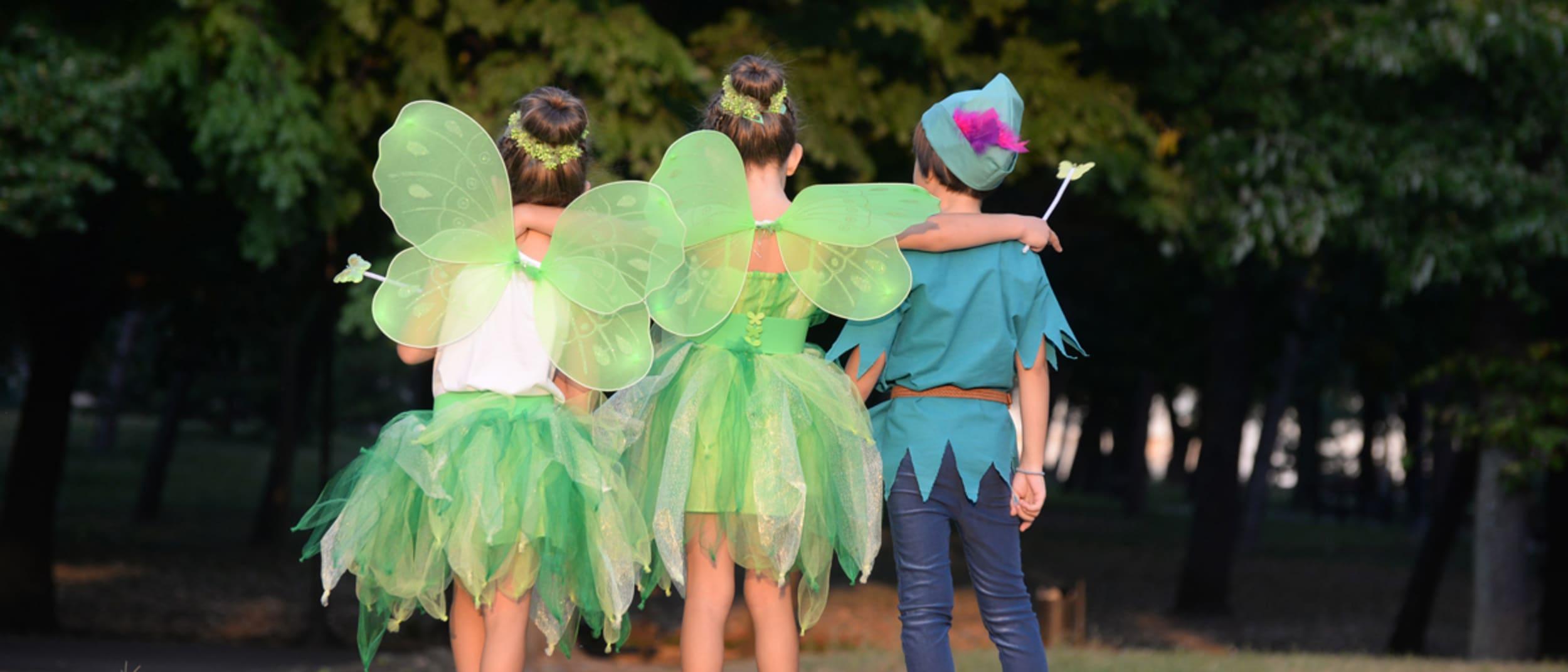 Farmers: Trixie the Fairy