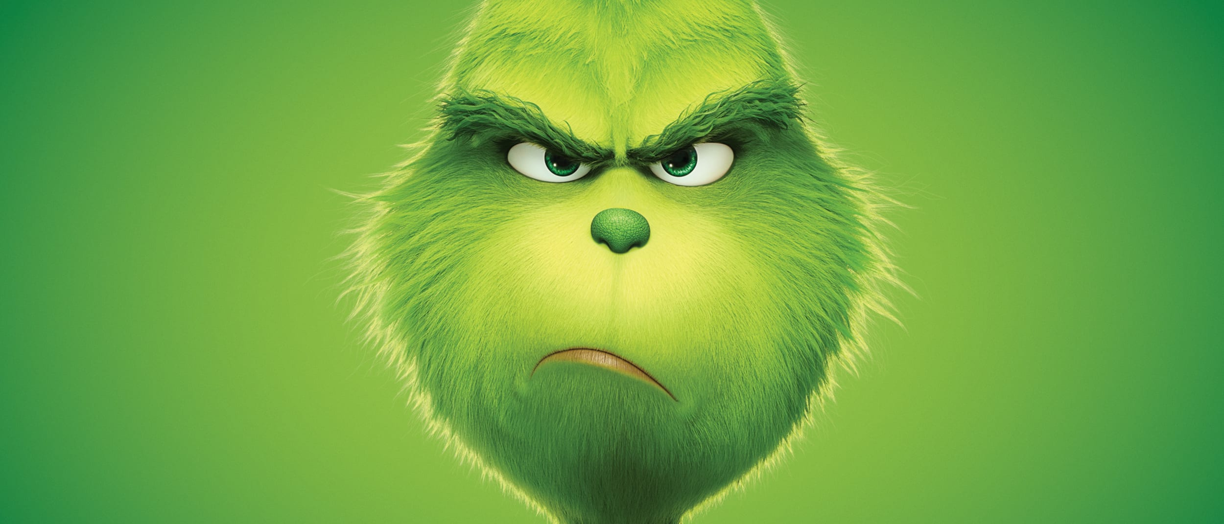 The Grinch family fun day