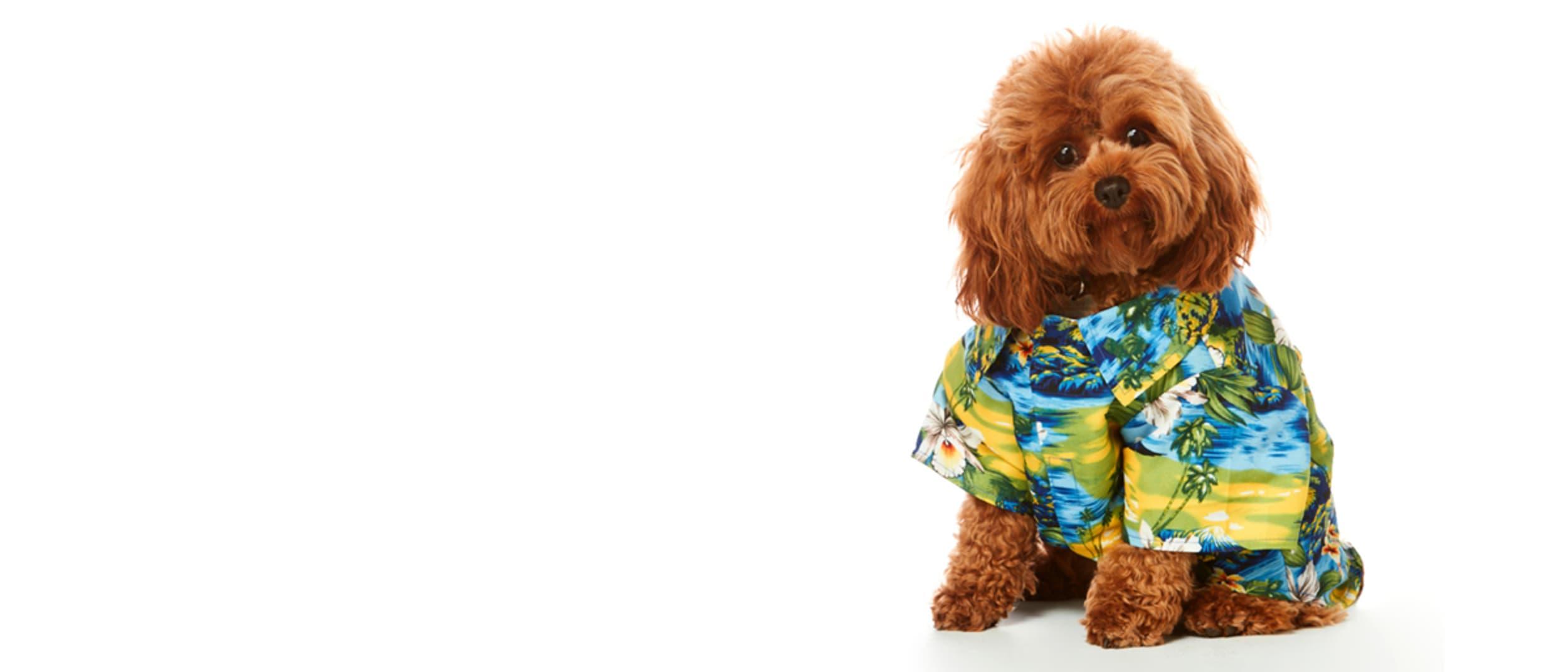 Join the Lowes Hawaiian shirt revolution!