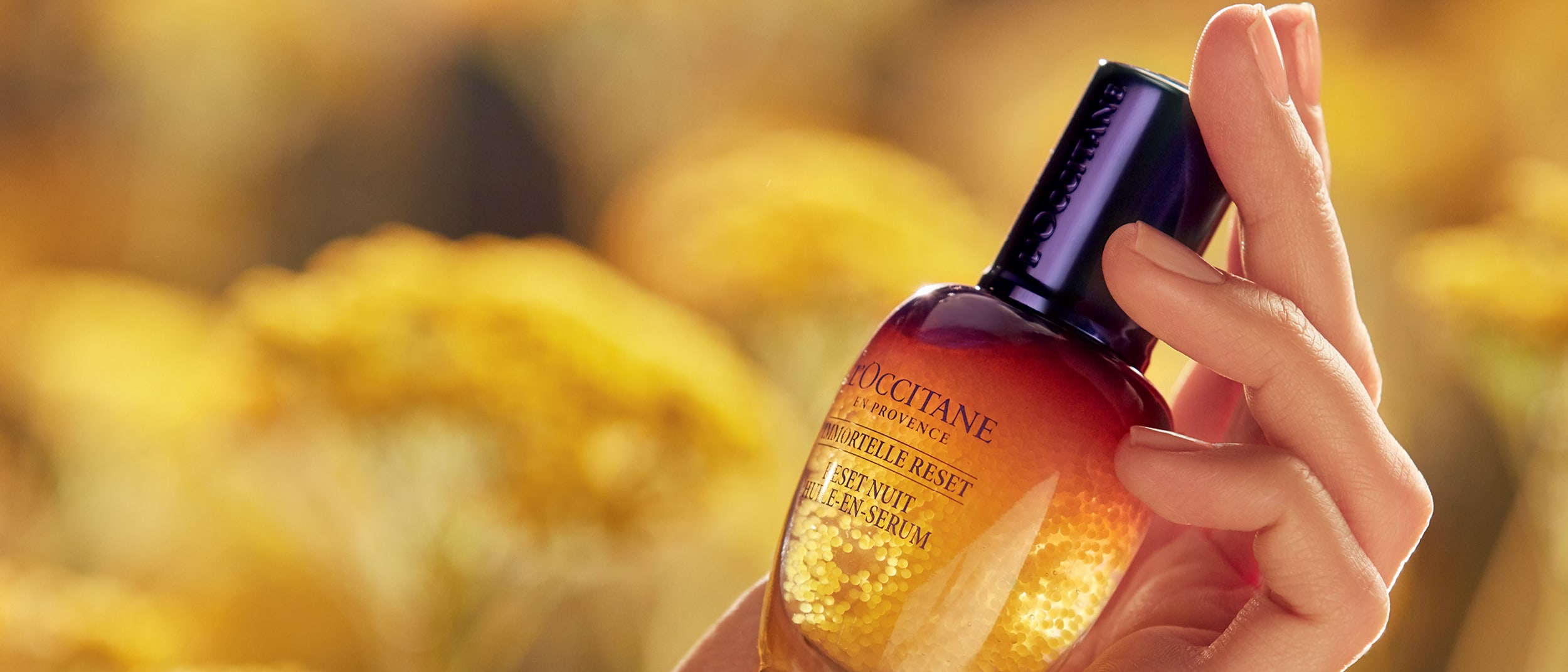 L'OCCITANE for Eye See PNG
