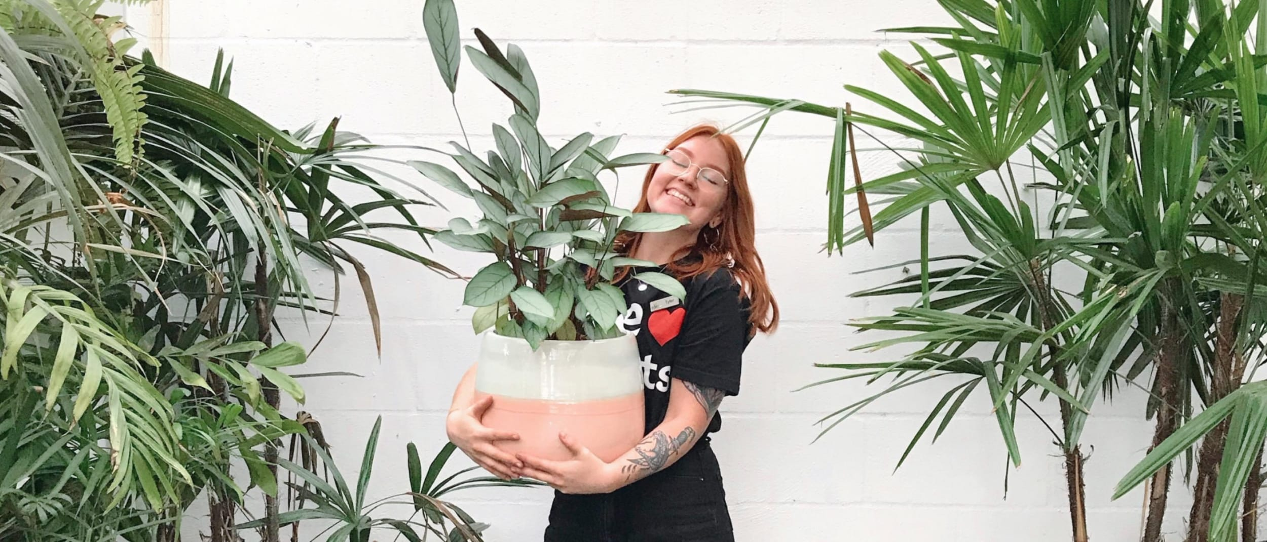 Gro Urban Oasis: Plants make people happy
