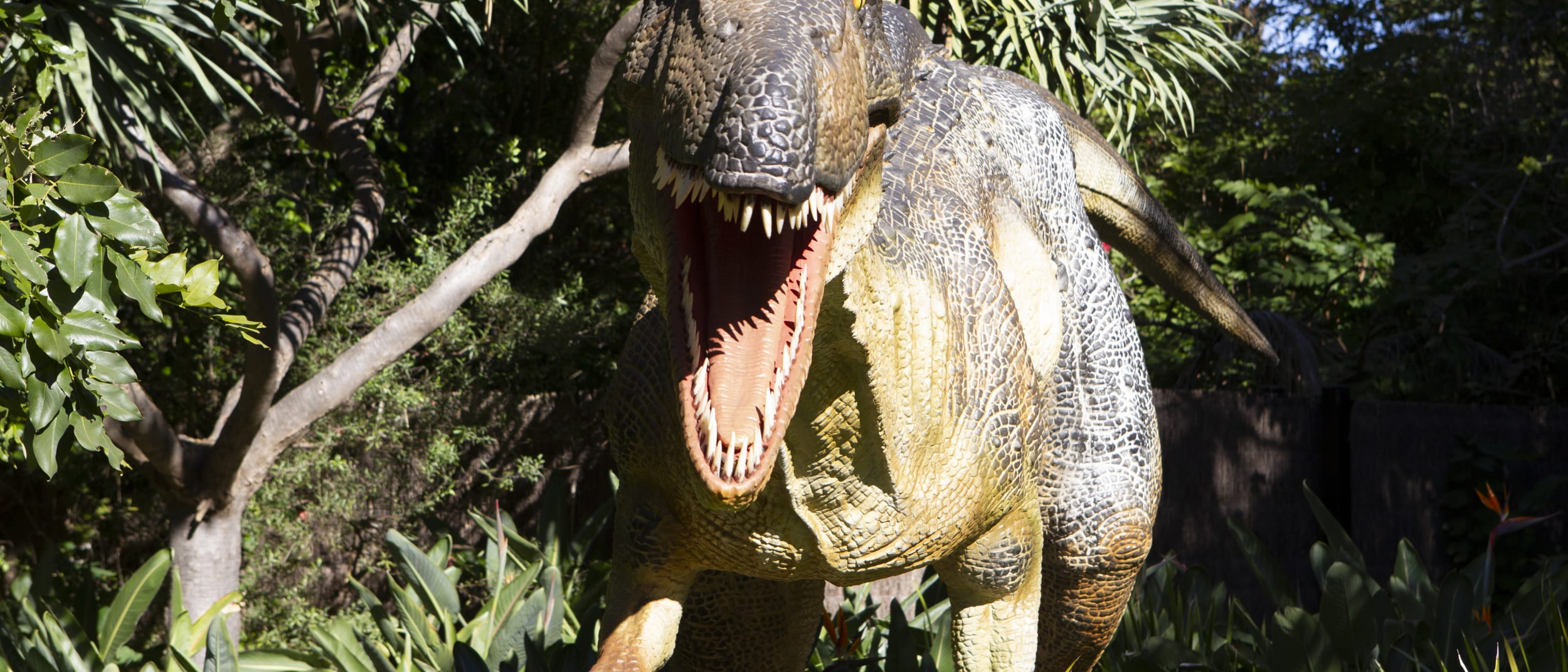 Dine with Dinosaurs