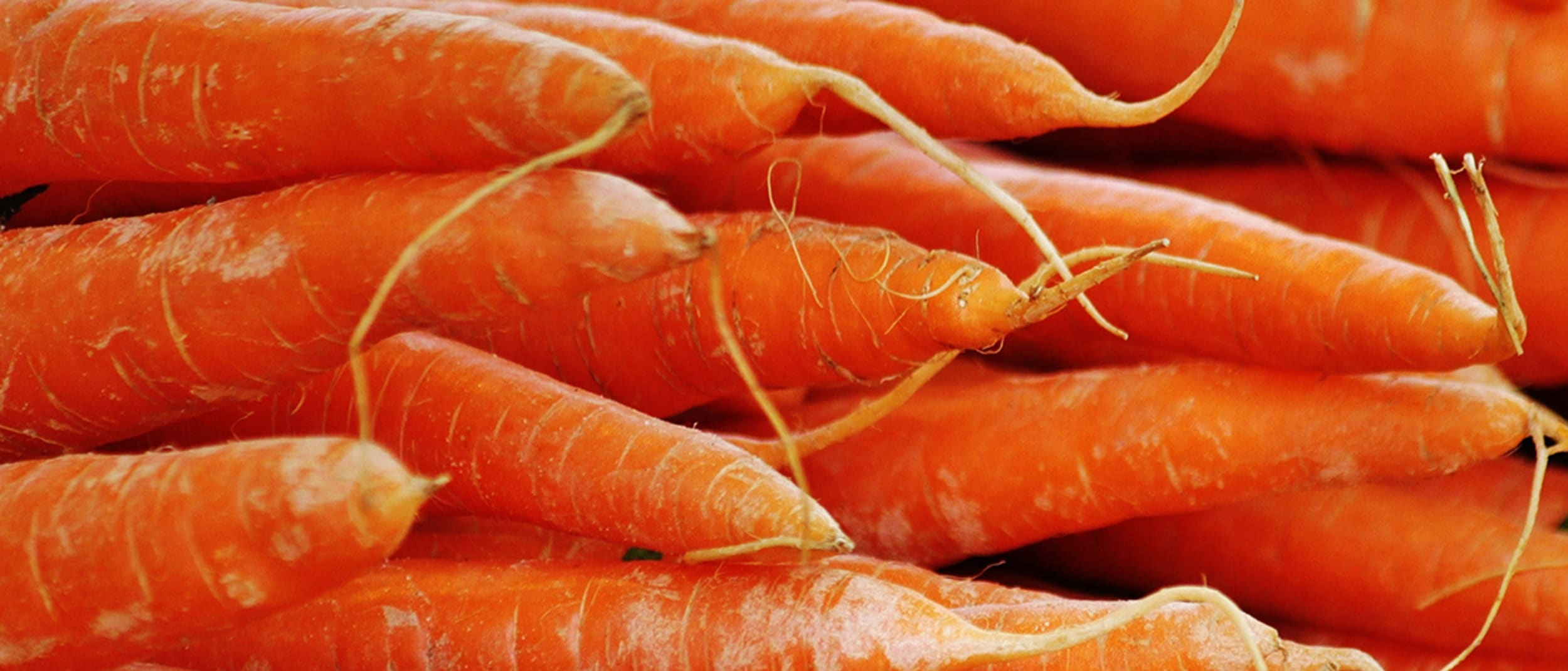 OPSM: does a carrot a day keep the optometrist away?
