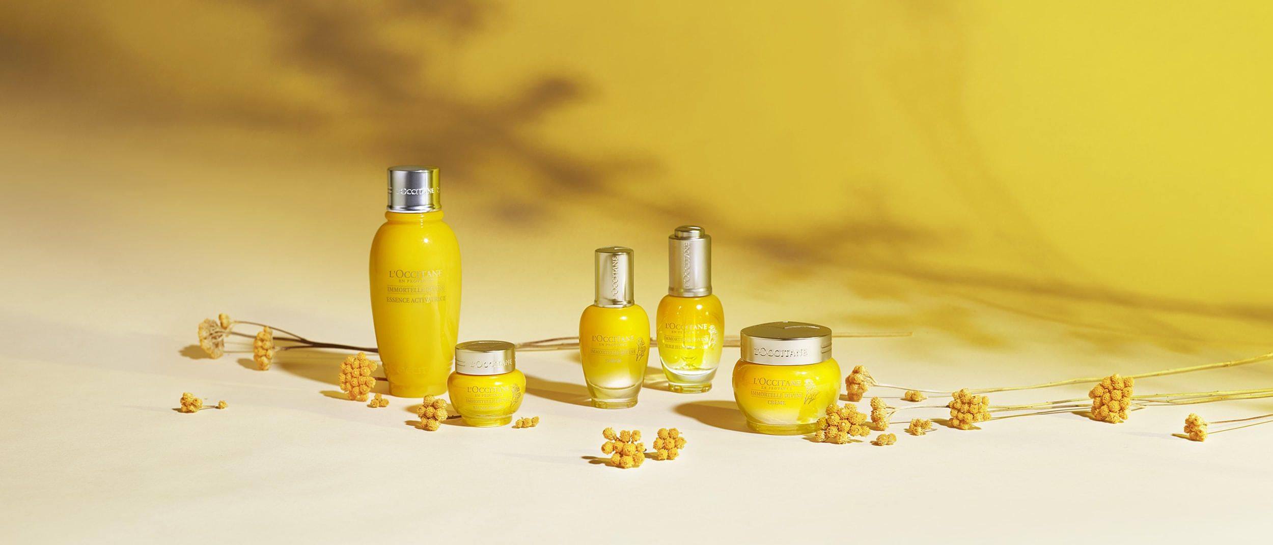 Discover the Genius Skincare at L'OCCITANE