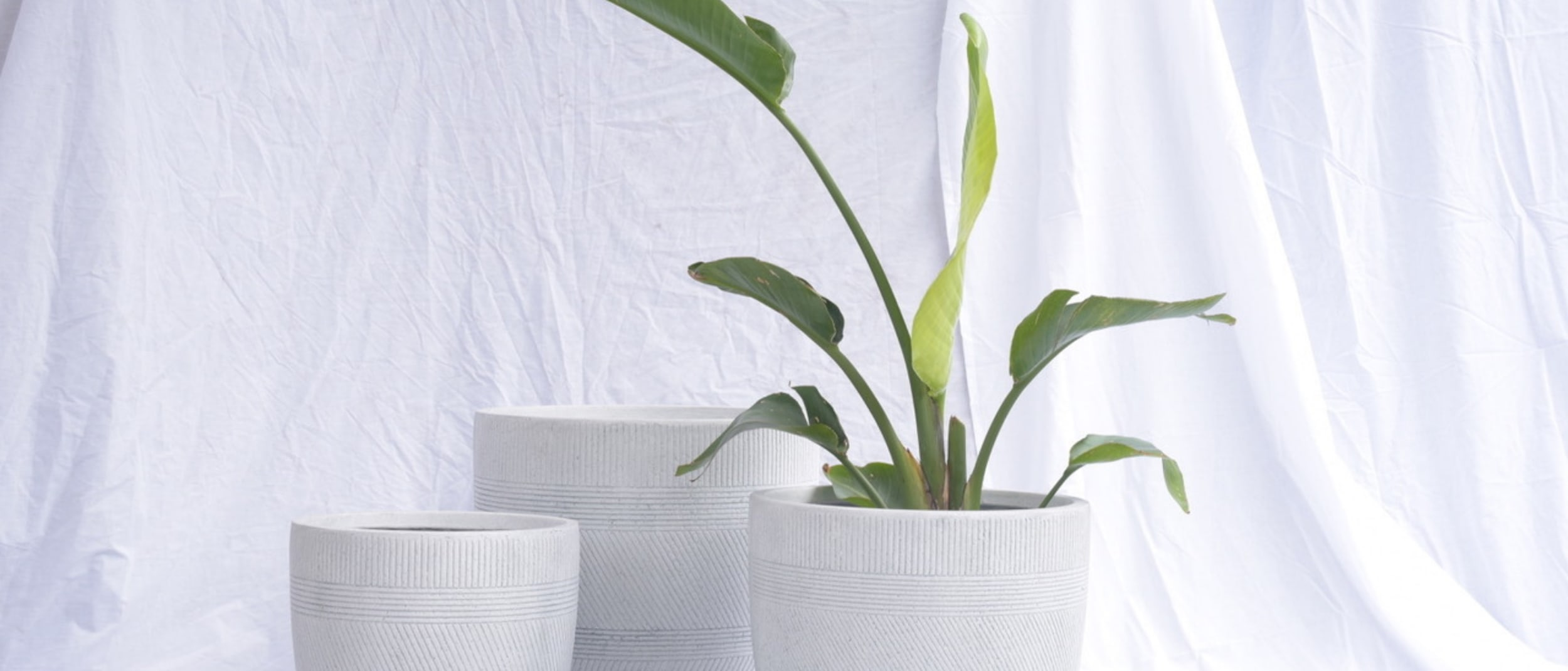 Gro Urban: Stylish pot set for your plans