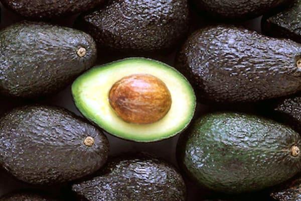 Freshcorp: Avocado special