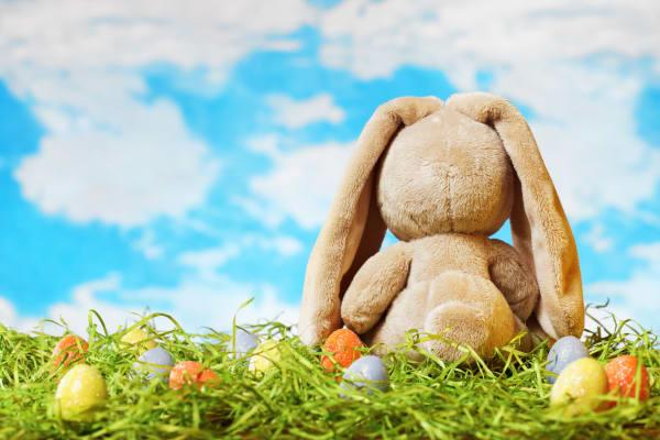 School Holidays: Build-A-Bunny workshops!