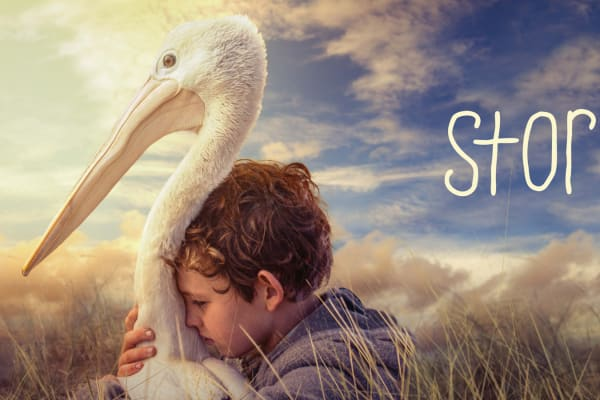 Win a family pass to go see STORM BOY this summer