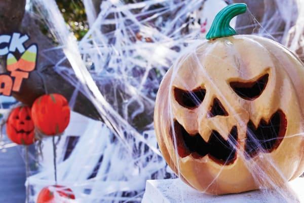 Halloween Trick or Treat Spooktactular