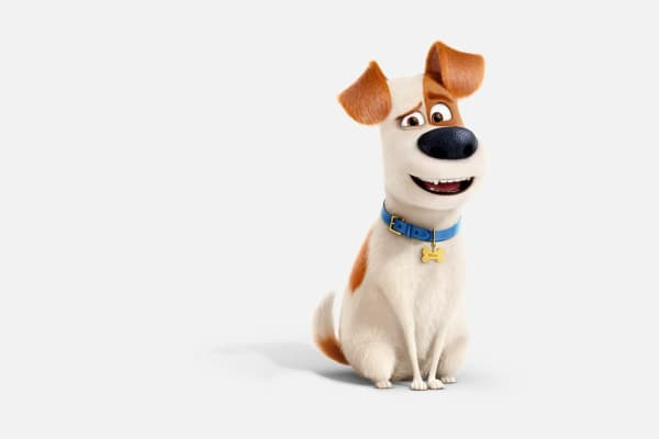 School holidays: The Secret Life of Pets 2 activity zone