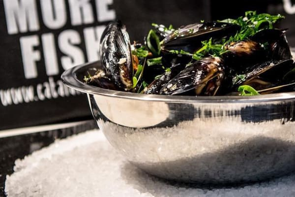 Catalano's Seafood: save $3 per kilo on fresh SA mussels