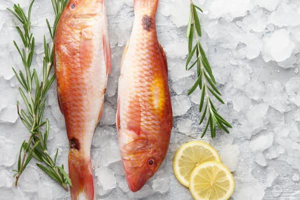 Fish Pier: Barramundi Fillet special
