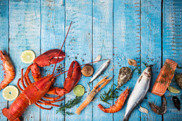 The ultimate seafood lover's guide