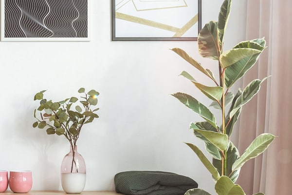 This winter, invest in some greenery to revamp your space