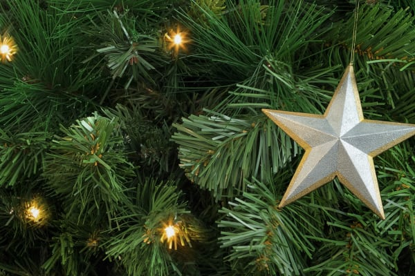 Fake Christmas tree buyers' guide