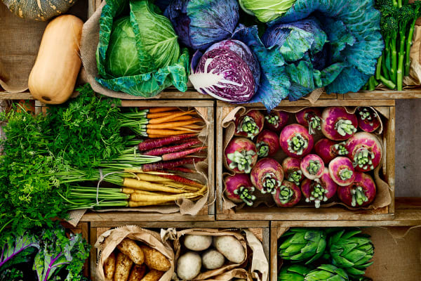 Fresh food pop up series