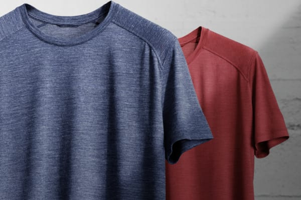 Icebreaker: buy 2 t-shirts, get 20% off