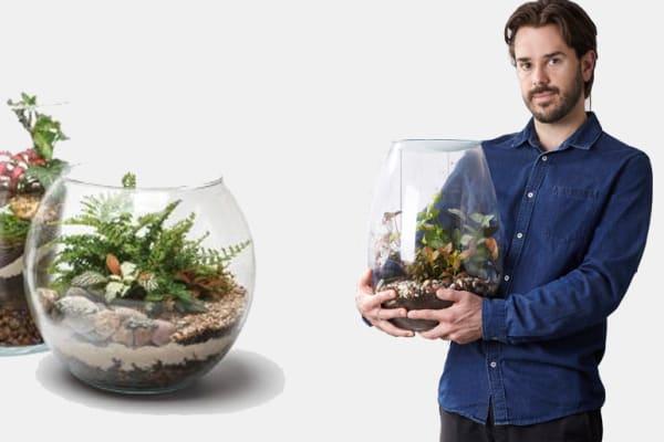 Gro Urban: terrarium making & how to care for a Kokedama Ball
