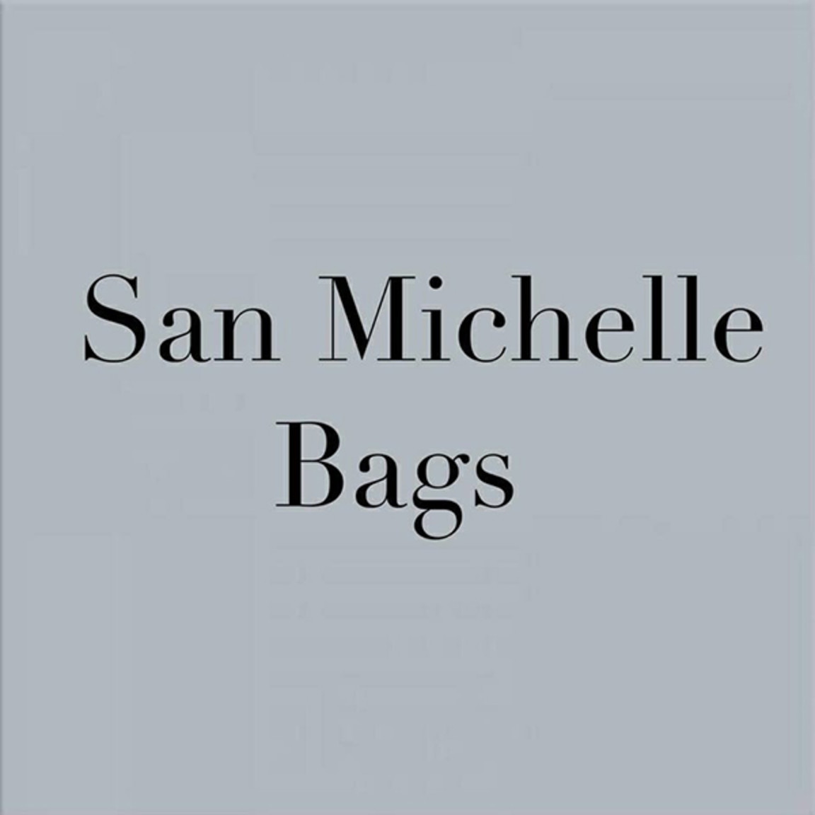San Michelle Handbags at Westfield St Lukes 25000c25041d9