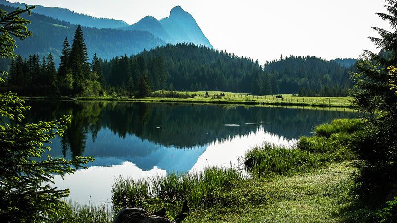 Moor im Schweizer Jura