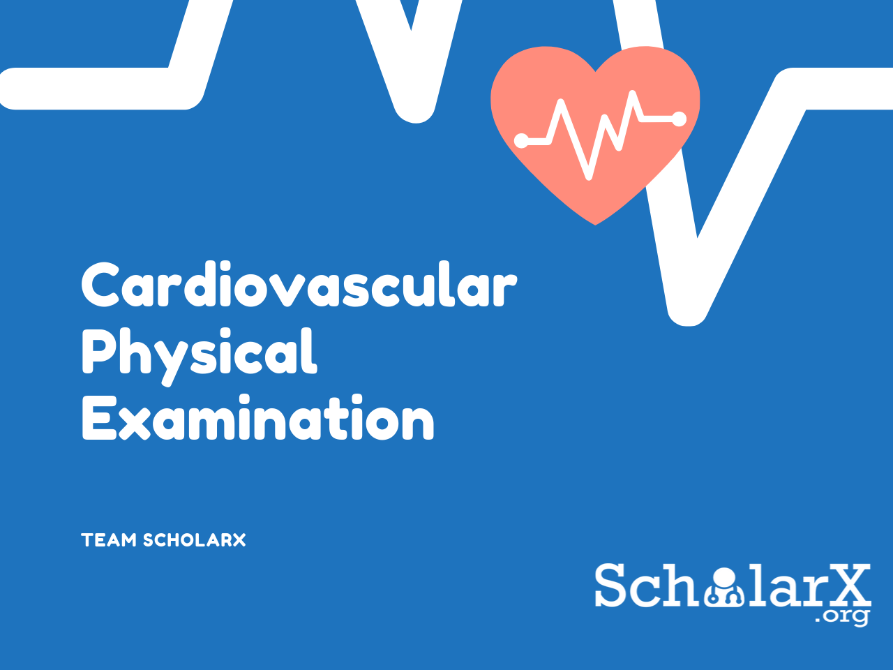 CVS Physical Exam