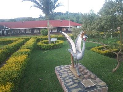 Olevel School of the week- Muntuyera High School, Kitunga