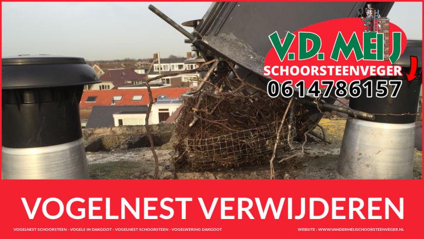 Vogelnest Verwijderen in schoorsteen Vogelwering bij last van vogels Zuid-Holland