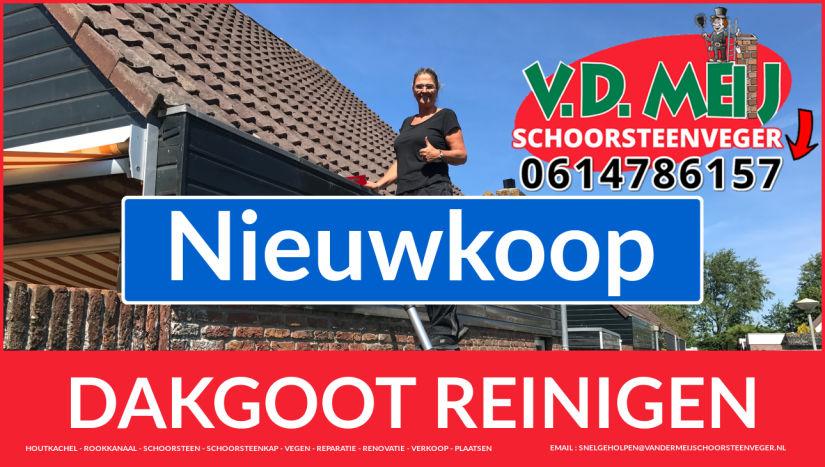 dakgoot schoonmaken Nieuwkoop