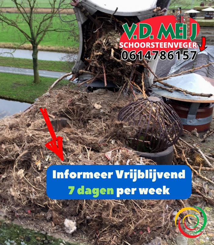 vogelnesten verwijderen Noordwijk