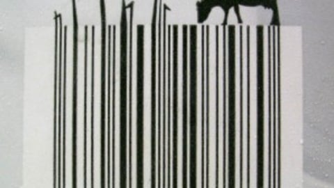 Top 5 Stylish Product Barcode Designs