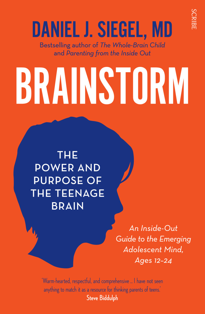 For Teenage Brains Importance Of >> Brainstorm Book Scribe Publications