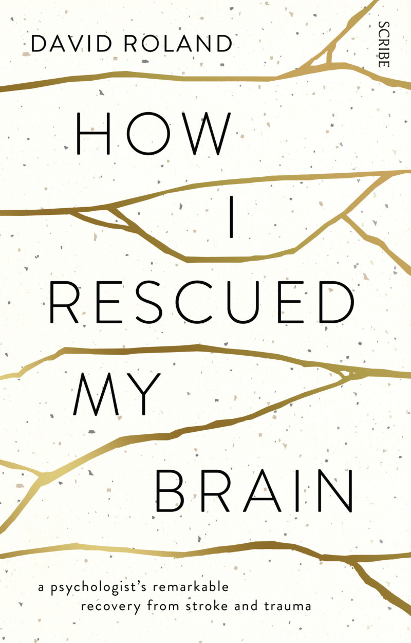Image result for how i rescued my brain book