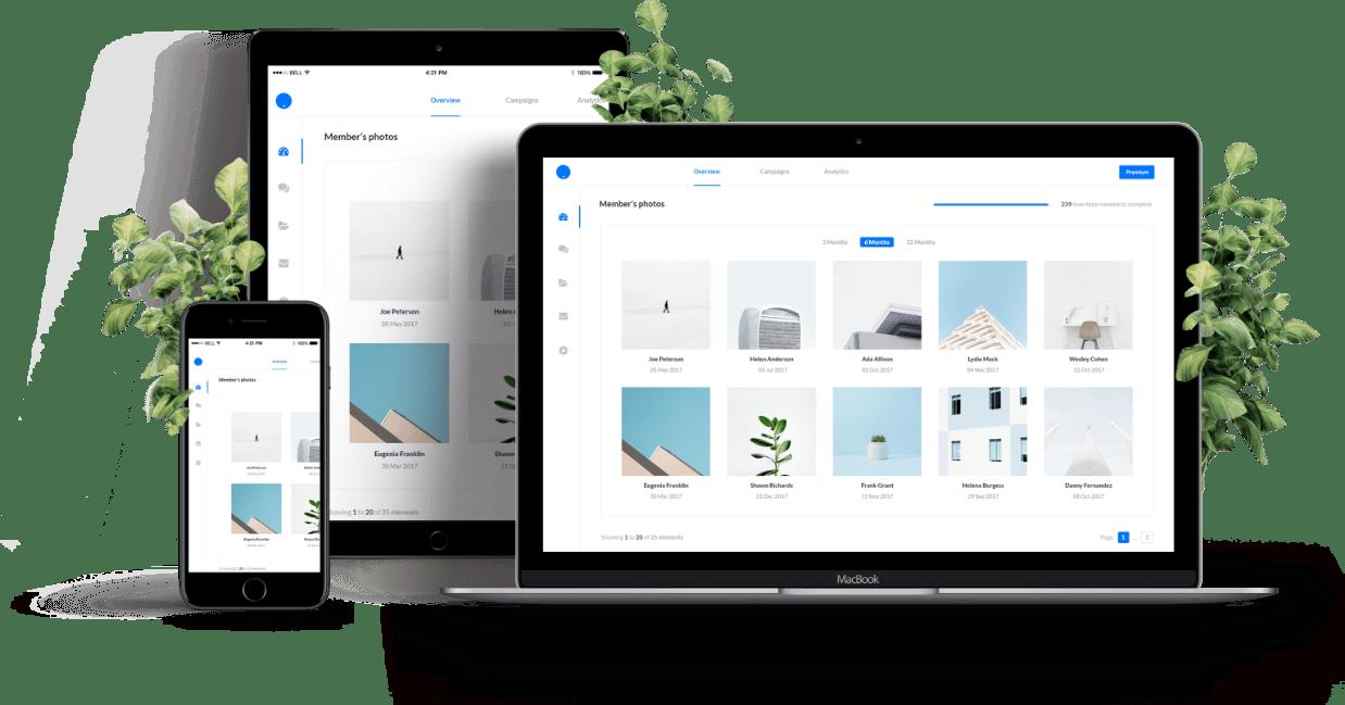website-design-developers