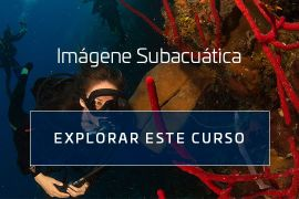 Underwater Imaging