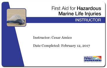 cesar amico - naui first hazardous marine fife injuries instructor
